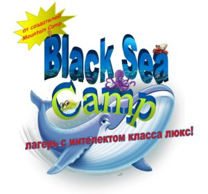 logo Black Sea Camp 2017 loggo